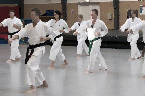 Permalink to:Karate x 2 (fra 10 år til 99+)